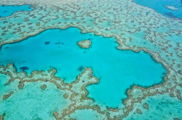 australie-grande-barriere-de-corail-st.jpeg