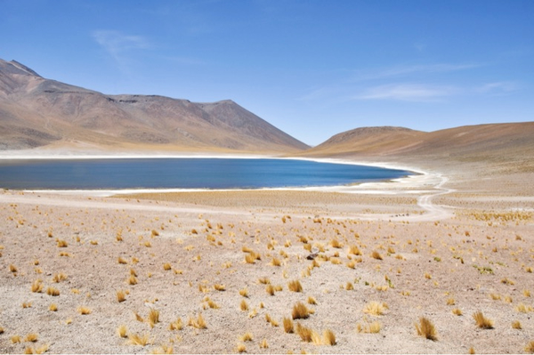 Laguna Miñiques à San Pedro de Atacama
