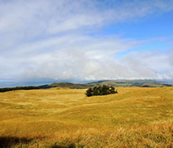 vue-volcan-terevaka.jpg