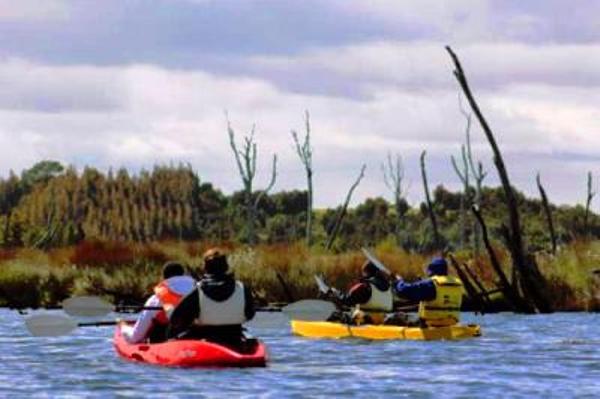 Kayak à Chepu