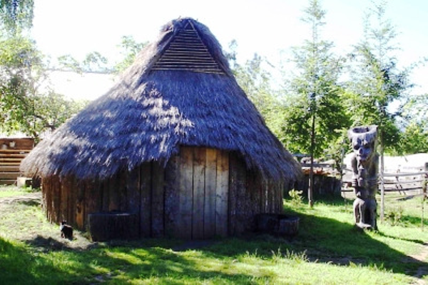 Mapuches' traditional house