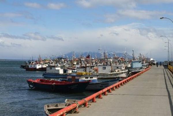 puerto-natales-toogo.jpg