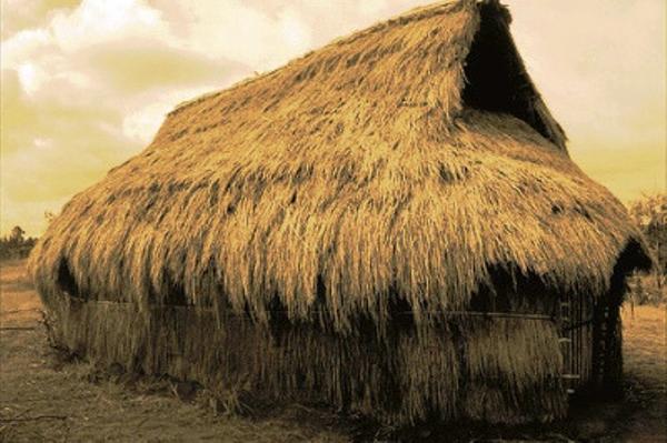 Ruka - Mapuche house