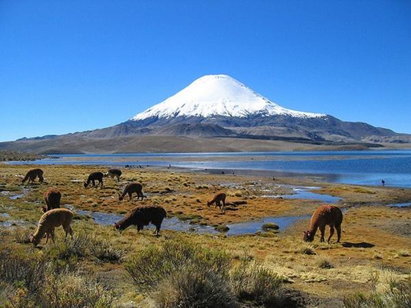 volcan-parinacota.jpg