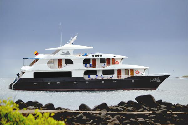 petrel-catamaran.jpg