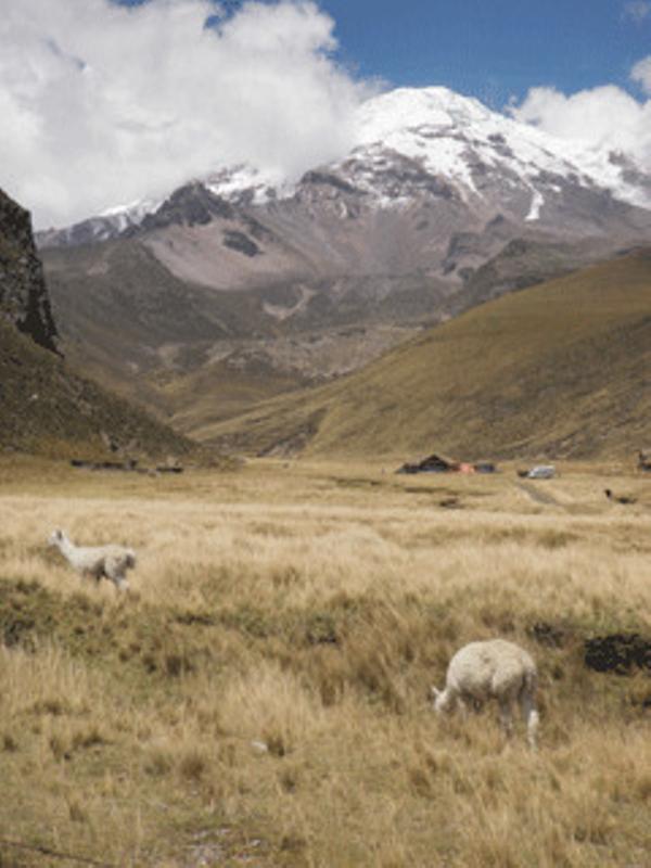 Chimborazo-1.jpg