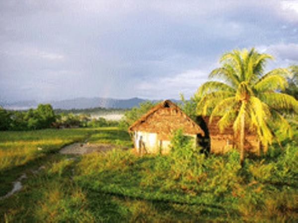 AMAZONIE-4-2.jpg