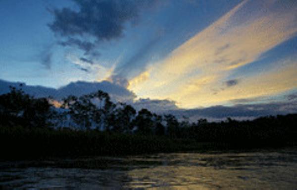 Amazonie-2-2.jpg
