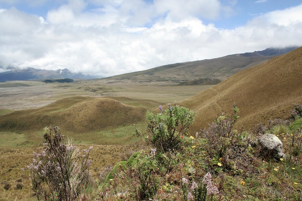 cotopaxi-paysage.jpg