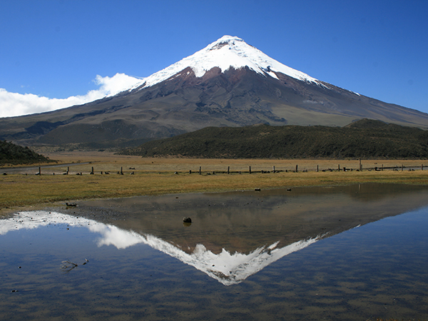 ANDES - Cotopaxi.jpg