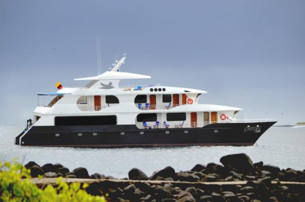 catamaran-petrel.jpg