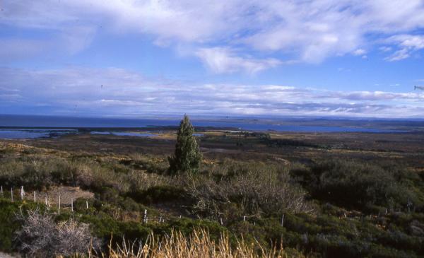 r40-lac-patagonie208b01fd395868ee5ea292ed25882b26.jpg
