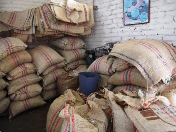 cafe-san-alberto-quindio20c2a920terra_colombia2010-1.JPG