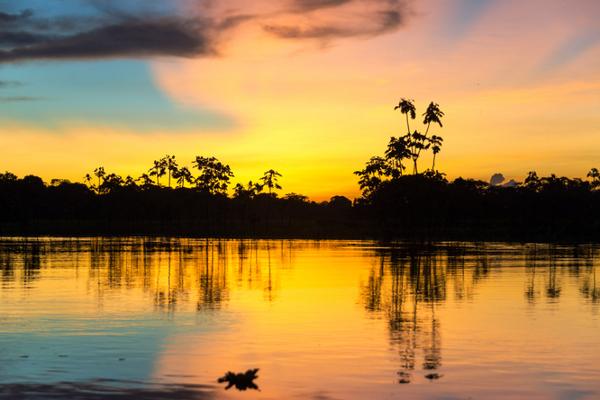 amazonie-soleil-1.jpeg