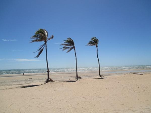 Guajirú