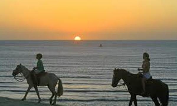 Balade à cheval sur la plage de Pipa