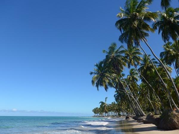 Praia dos Carneiros Beach
