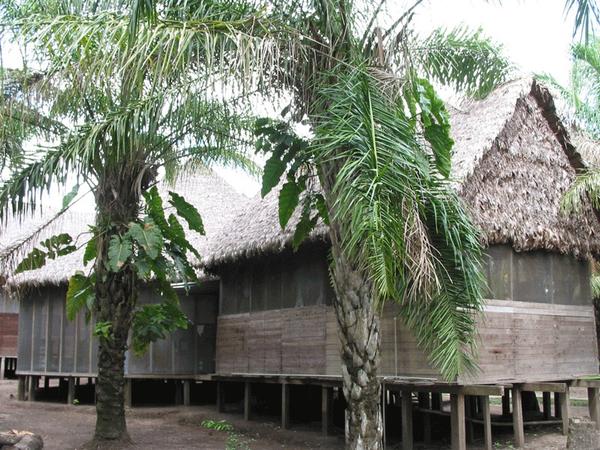 Cabin, Bala Camp, Amazonia