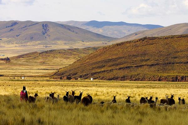 altiplano_paysage_04-1.jpg