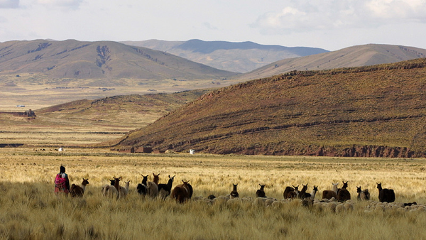 paysages_altiplano-9e1a900785c4b87615c602f744ef0b245.jpg