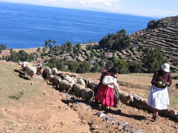 titicaca-amantanti-9.jpg