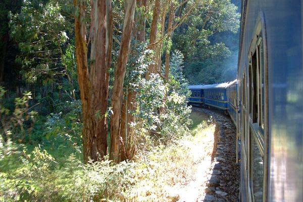 train_vistadome_04-2.jpg
