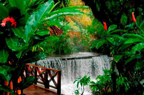 Thermes de Tabacon (Arenal) © (18).jpg