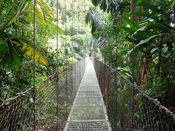 arenal20hanging20bridge-2.JPG