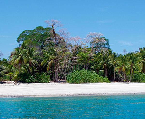 panama-islas-secas-lodge-plage-vue3.jpg