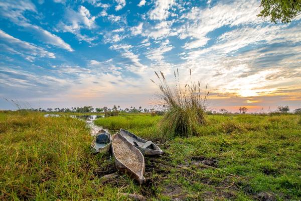 Mokoro à travers l'Okavango- Botswana