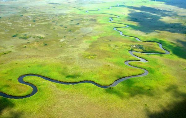 Les canaux du Delta