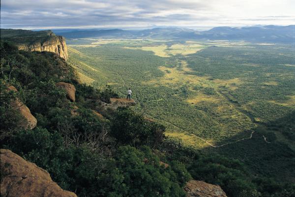 entabeni-safari-conservancy-escarpement-view.jpg