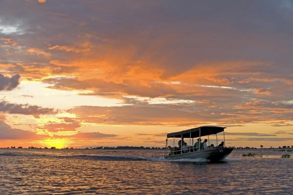 Excursion au coucher de soleil sur la rivière Chobe.