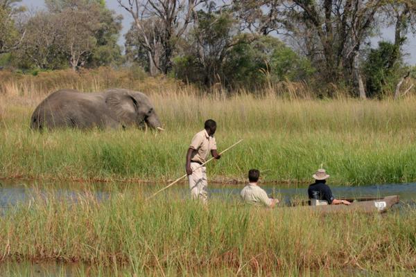 Mokoro le long du Delta de l'Okavango au Botswana.