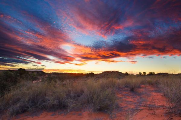 Sunset in the Kalahari Desert in South Africa