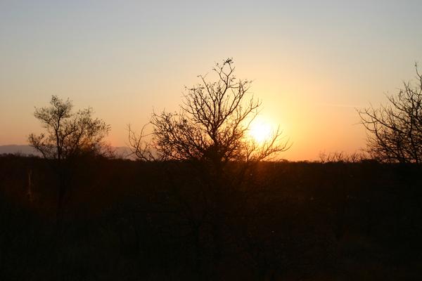 Sunset in the Kruger National Park