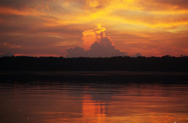 Sunset over the Amazon Rainforest