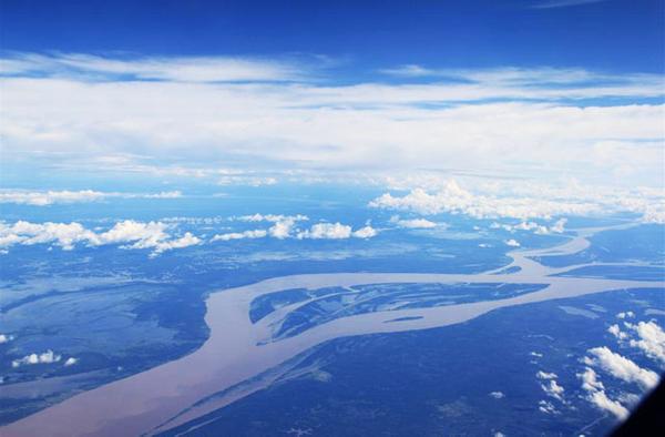 Sky View, Amazon Rainforest