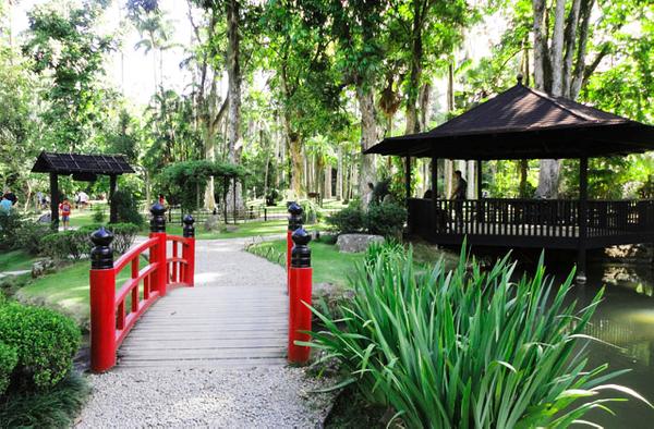Botanic Garden, Rio