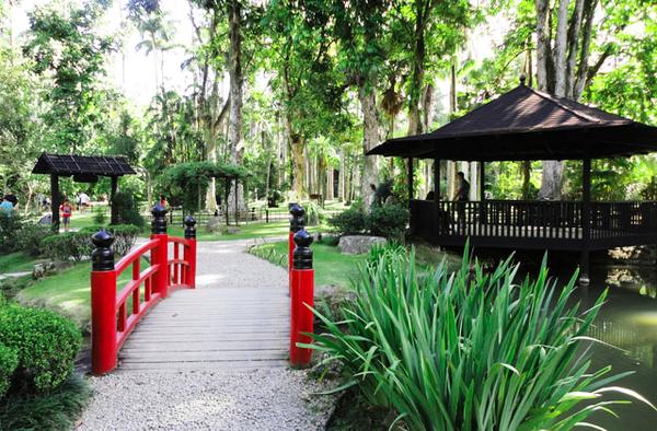 Jardin botanique, Rio