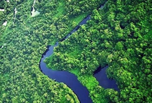 Alta Floresta River