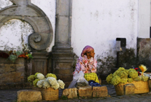 Tiradentes flower merchant