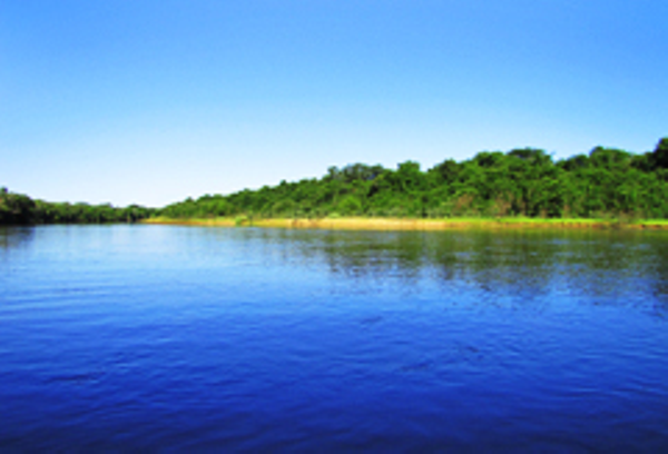 Southern Pantanal