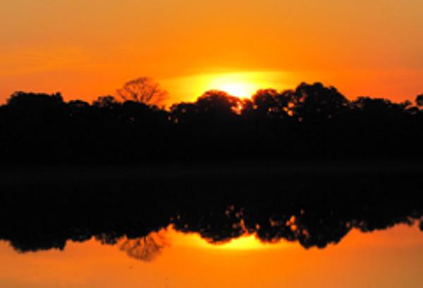 Couché de soleil au Pantanal