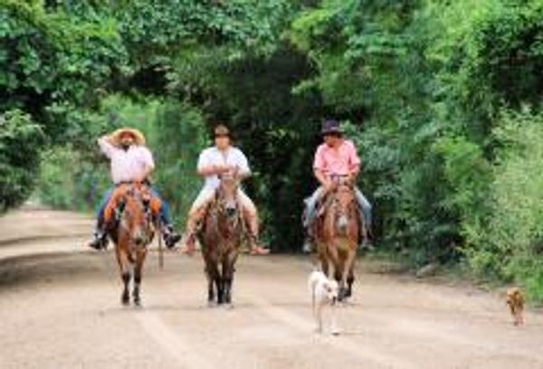 Cowboys in Pantanal
