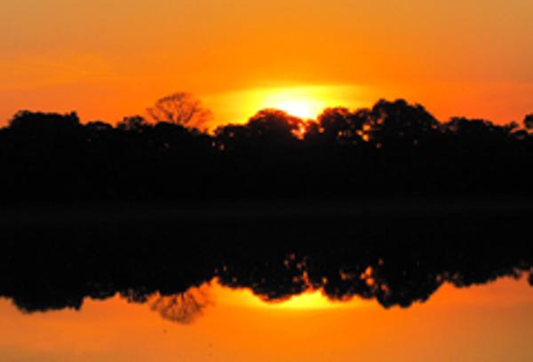 Sunset in Pantanal