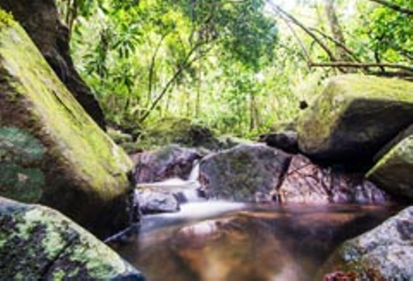 Paraty Waterfalls