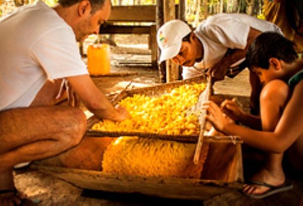 Men working in Manaus