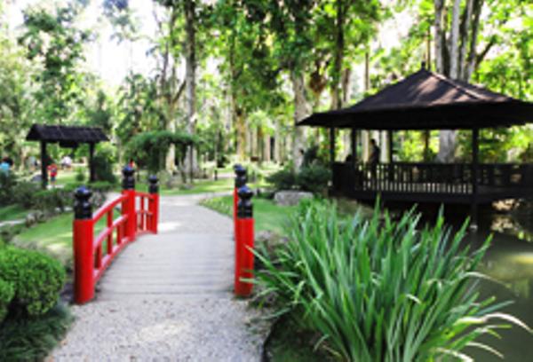 Rio Jardin Botanique
