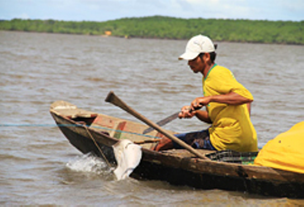 Parnaiba Fisherman
